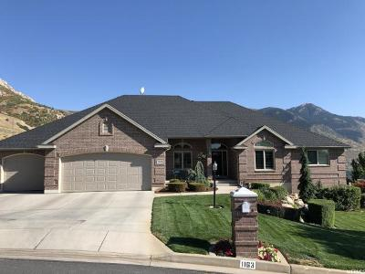 North Ogden Single Family Home For Sale: 1163 E 3400 N