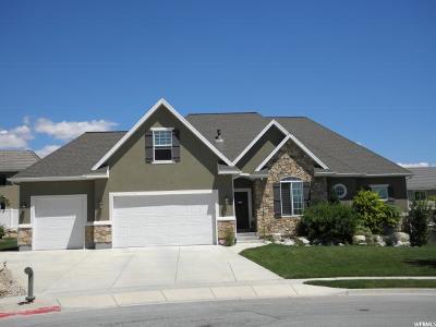 Lehi Single Family Home For Sale: 971 W Wade Cir N