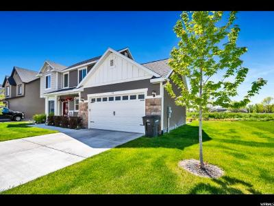 Provo Single Family Home For Sale: 93 N 2250 W