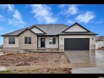 Salem Single Family Home For Sale: 315 E 1100 S