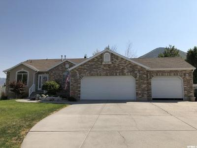 Tooele County Single Family Home Under Contract: 517 S Lacey Ct
