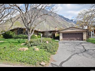 Provo, Provo Canyon Single Family Home For Sale: 2220 N Oakcrest Ln E