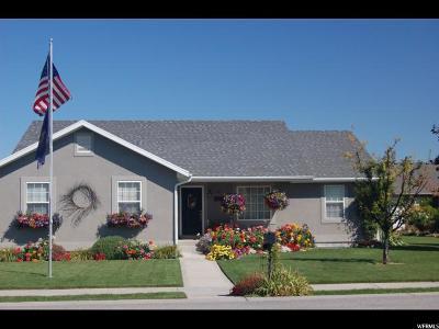 Preston Single Family Home For Sale: 617 E 145 S