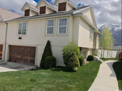 Spanish Fork Single Family Home For Sale: 1339 S Somerset