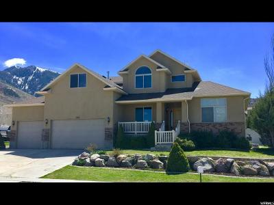 Tooele Single Family Home Under Contract: 1282 E Brandy Ln S