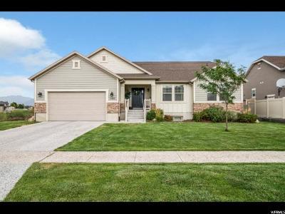 Spanish Fork Single Family Home For Sale: 2107 Rio Grande Dr