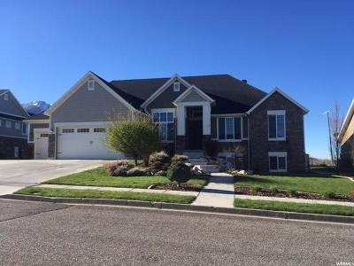 Perry Single Family Home For Sale: 1285 W 3050