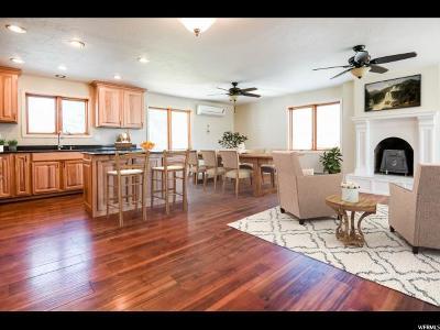 Lehi Single Family Home For Sale: 1572 N 1400 E