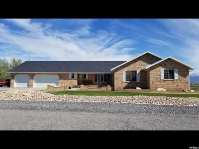 Spanish Fork Single Family Home For Sale: 2686 W 6970 S