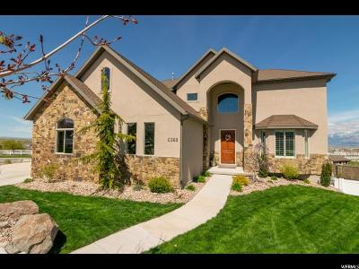 Herriman Single Family Home For Sale: 6368 W Light Hill Cir