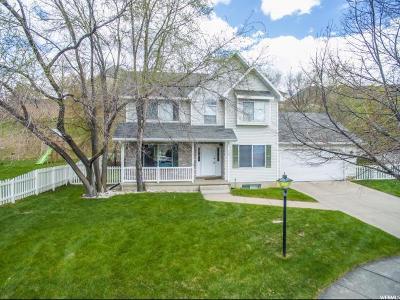Logan Single Family Home For Sale: 74 Canterbury Cir