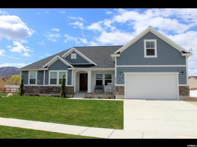 Wasatch County Single Family Home For Sale: 2470 S 400 E