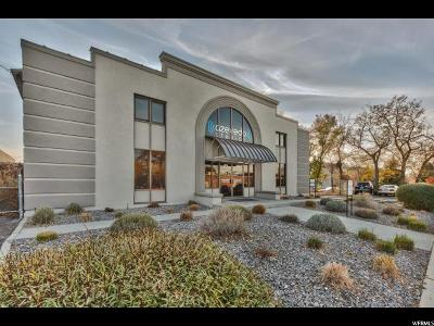 Midvale Single Family Home For Sale: 870 N Union Ave