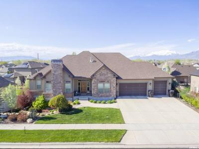 Spanish Fork Single Family Home Under Contract: 866 Westpark Dr