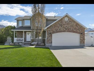 Kaysville Single Family Home For Sale: 1991 S 400 E