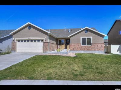 Lehi Single Family Home For Sale: 563 S Willow Park Dr #469