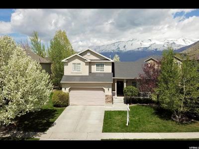 Cedar Hills Single Family Home For Sale: 4058 W Valderrama