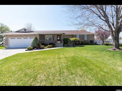 Lehi Single Family Home For Sale: 533 W 2200 N