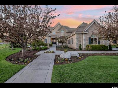 Provo Single Family Home For Sale: 536 W Sheffield Dr N
