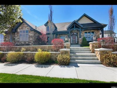 Salem Single Family Home For Sale: 666 Strawberry Cir