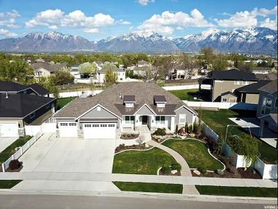 West Jordan Single Family Home For Sale: 8743 S Okubo Dr