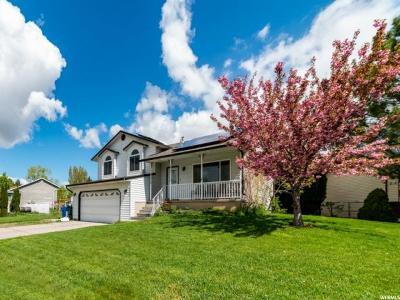 Cedar Hills Single Family Home For Sale: 4236 W Cedar Hills Dr N