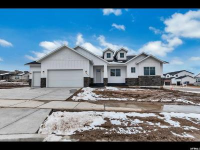 Payson Single Family Home For Sale: 558 S 1340 E #12