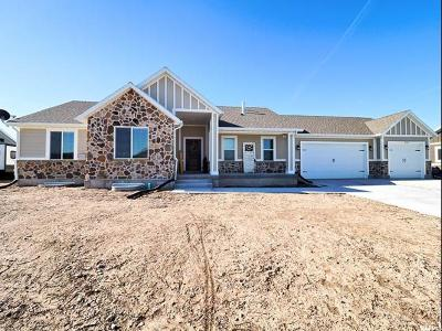 Tremonton Single Family Home Under Contract: 646 E 100 N