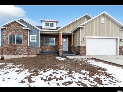 Payson Single Family Home For Sale: 559 S 1300 E #19