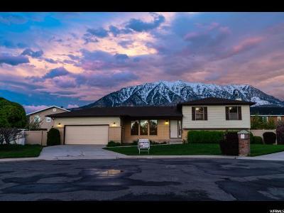 Orem Single Family Home For Sale: 580 E 910 N