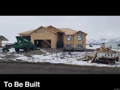 Tremonton Single Family Home For Sale: 10782 N 8400 W