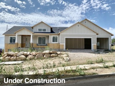 North Ogden Single Family Home For Sale: 3633 N 800 E