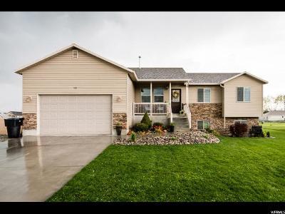 Preston Single Family Home Under Contract: 532 S 4th E