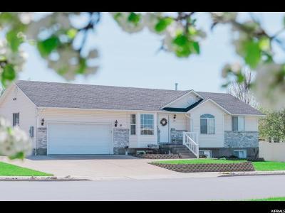 Providence Single Family Home For Sale: 196 E 360 N