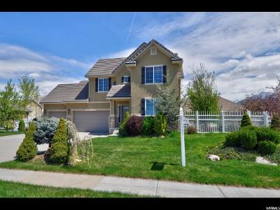 Kaysville Single Family Home Under Contract: 919 S Kays Dr