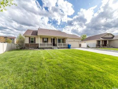 Grantsville Single Family Home Under Contract: 238 Donner Pl