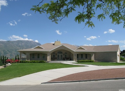 Payson Single Family Home For Sale: 5875 W 11300 S