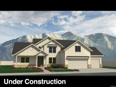 Mapleton Single Family Home For Sale: 1153 N 1100 E #6