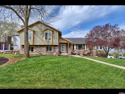 Ogden Single Family Home Under Contract: 5041 S Taylor Ave