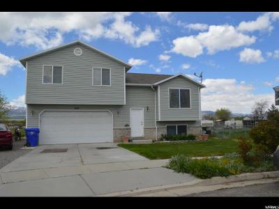 Grantsville Single Family Home For Sale: 668 Easton Ct