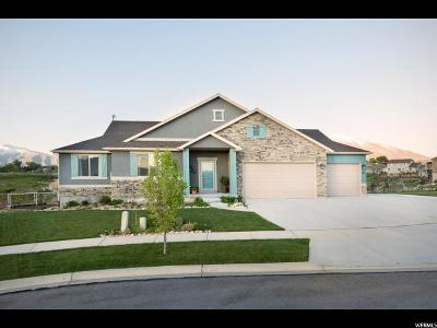 Salem Single Family Home Under Contract: 97 E Salem Park Cir
