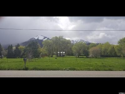 Wellsville Residential Lots & Land Under Contract: 65 S 100 W