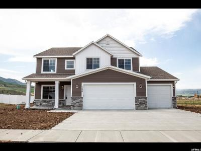Hyrum Single Family Home For Sale: 1480 E 340 S