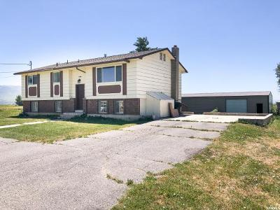 Lewiston Single Family Home For Sale: 1821 W 1600 S