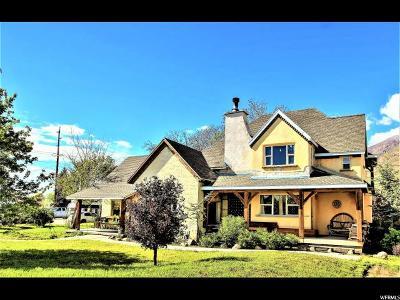 Springville Single Family Home For Sale: 411 E 400 N