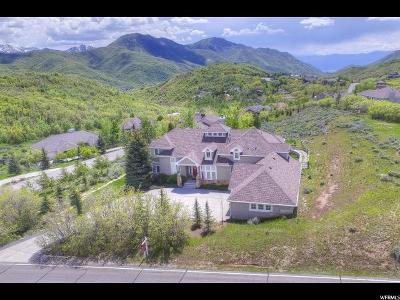 Salt Lake County Single Family Home For Sale: 931 N Pioneer Fork Rd