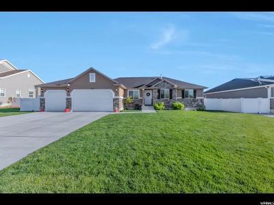 Clinton Single Family Home Under Contract: 3513 W Eurasian Crane N