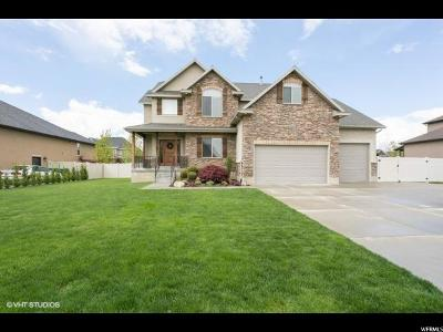 Layton Single Family Home Under Contract: 87 N 3225 W