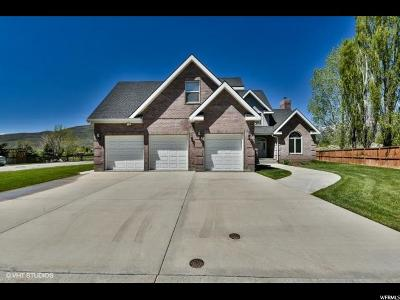 Midway Single Family Home For Sale: 913 N Swiss Farm Ct W