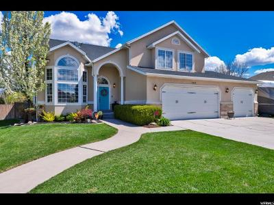 South Jordan Single Family Home Under Contract: 11635 S 1185 W